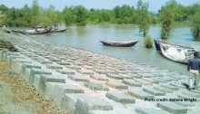 Blocks_Southern_Bangladesh