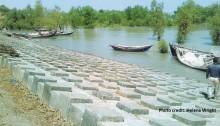 Blocks_Southern_Bangladesh