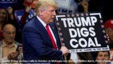 trump-coal